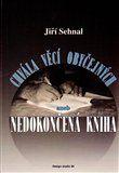 Jiří Sehnal: Chvála věcí obyčejných aneb Nedokončená kniha cena od 124 Kč