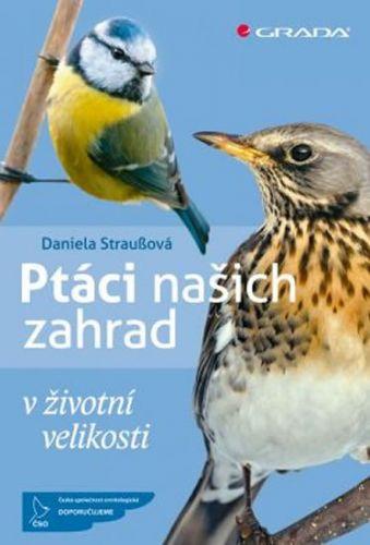 Daniela Straußová: Ptáci našich zahrad v životní velikosti cena od 210 Kč