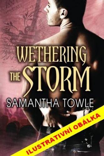 Samantha Towle: Mighty Storm 2 - Zkrocení bouřliváka cena od 205 Kč