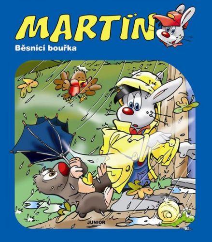 JUNIOR Martin - Běsnící bouřka cena od 62 Kč
