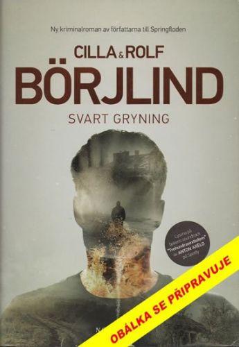Rolf Börjlind, Cilla Börjlind: Černý úsvit cena od 319 Kč