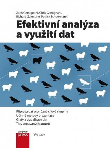 Zach Gemignani, Chris Gemignani, Richard Galentino, Patrick Schuermann: Efektivní analýza a využití dat cena od 312 Kč