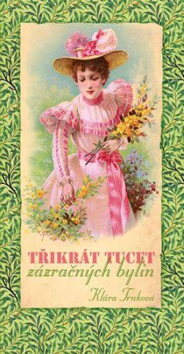 Klára Trnková: Třikrát tucet zázračných bylin cena od 120 Kč