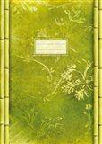Tushita Sešit - Bamboo cena od 28 Kč
