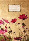 Tushita Sešit - Flowers cena od 32 Kč