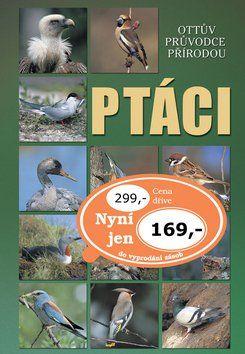 Alena Červená: Ottův průvodce přírodou - Ptáci cena od 129 Kč
