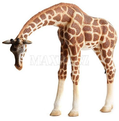 Bullyland Žirafa cena od 160 Kč