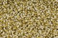 Breno Les Must 230 koberec