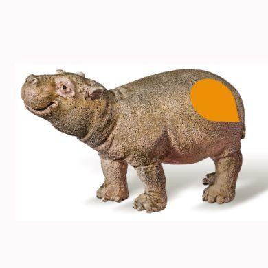 RAVENSBURGER tiptoi® Figurka hroch mládě cena od 191 Kč