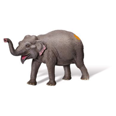 RAVENSBURGER tiptoi Figurka slon indický cena od 0 Kč