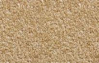 Breno Dynasty 70 koberec
