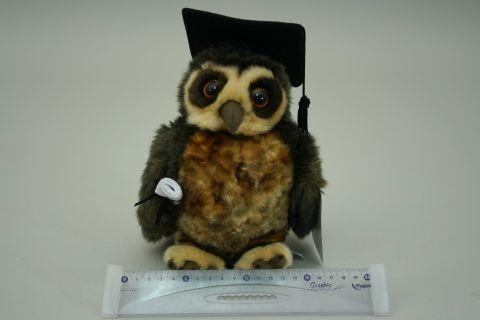 Lamps Plyš Moudrá sova cena od 305 Kč