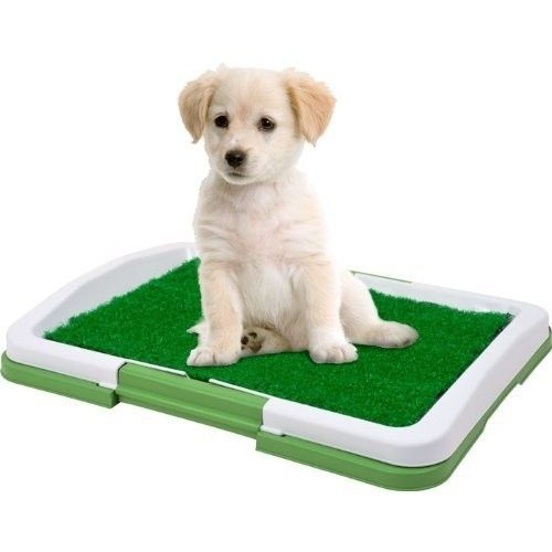 Fashion Manufacturer Puppy Potty Pad