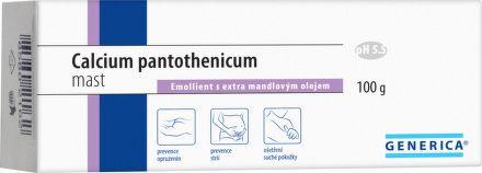 Calcium pantothenicum mast 100 g