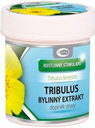 Tribulus bylinný extrakt 60 tobolek