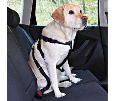 Nobby Bezpečnostní postroj do auta