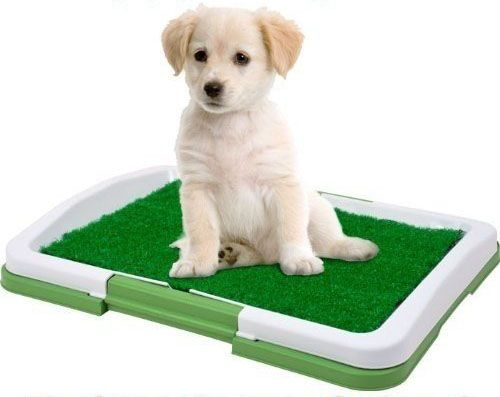 VOgadgets Toaleta pro psy
