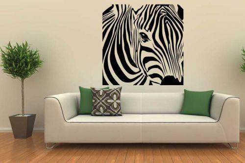 Shopnisi Zebra ve čtverci