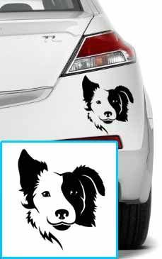 Shopnisi Samolepka na auto Border kolie pes v autě