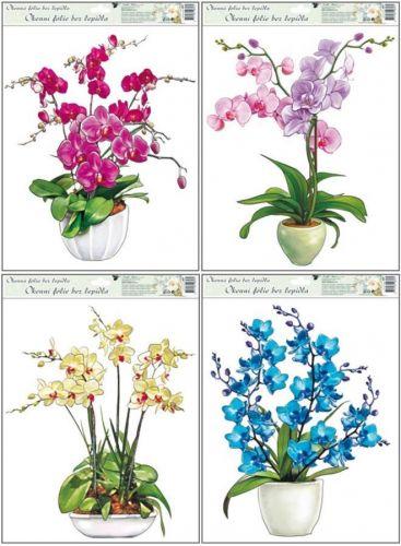 Anděl Přerov Okenní fólie Orchideje set