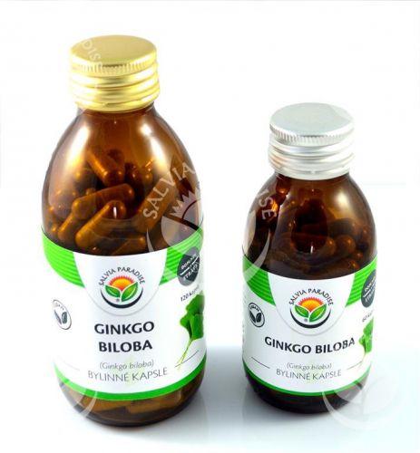 Salvia Paradise Ginkgo biloba Jinan 60 ks