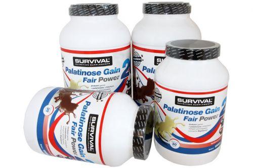 SURVIVAL Palatinose Gain 20 Fair Power 4500 g