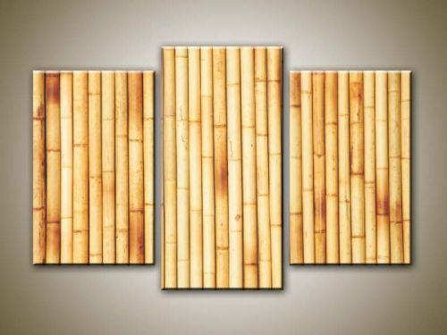 Xdecor Suchý bambus