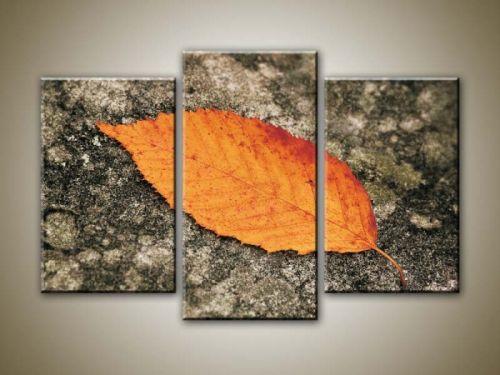 Xdecor Podzimní list