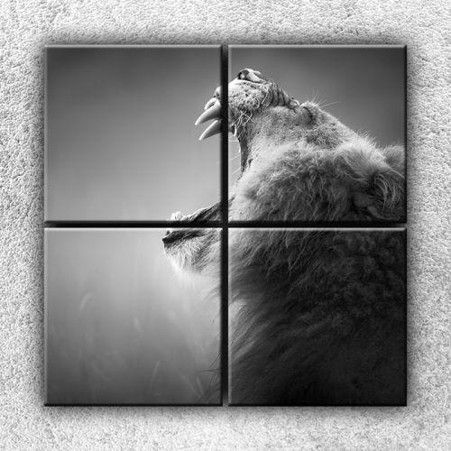Xdecor Řev lva