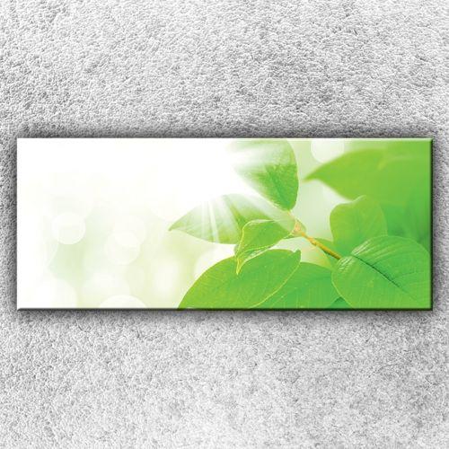 Xdecor Zelené lístky