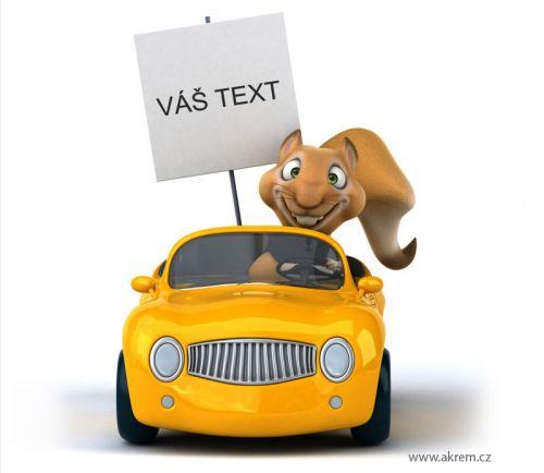 Xdecor Veverka v autě s vlatním popisem