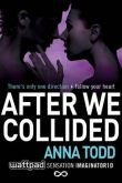 Anna Todd: After we collided - EN cena od 216 Kč