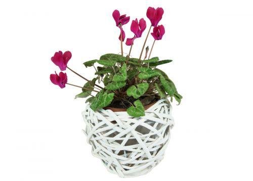 Twigo Bílý proutěný květináč tvaru hnízdo