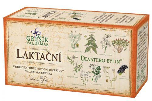 Grešík Devatero bylin Laktační čaj 20x1,5 g cena od 35 Kč