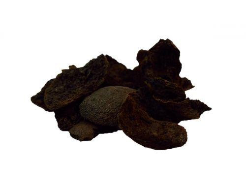 Salvia Paradise Ořešák černý oplodí 50 g cena od 90 Kč