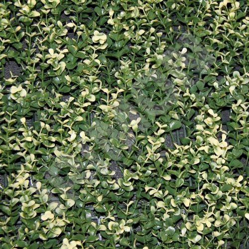 ARTLEAF BUXUS LONG VG bíle panašovaný buxus Umělý živý plot 50 x 50 cm