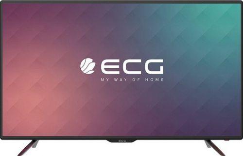 ECG 50 F02T2S2