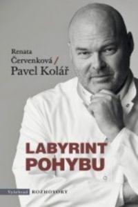 Renata Červenková: Labyrint pohybu cena od 119 Kč