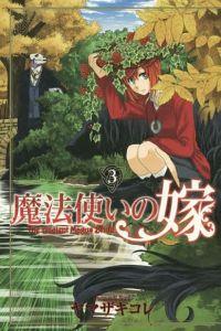 Koré Yamazaki: Čarodějova nevěsta 3 cena od 148 Kč