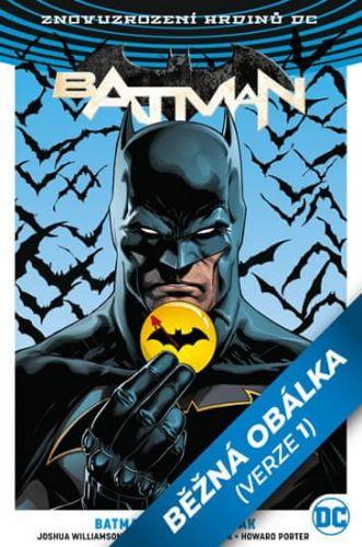 Howard Porter, Jason Fabok: Batman / Flash - Odznak cena od 209 Kč