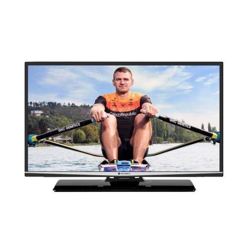 GoGEN TVF 32R571 STWEB cena od 5490 Kč