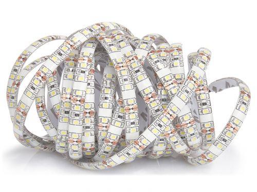 ECOLIGHT LED pásek - 2835 - 12V - 5m - 48W - 600 diod - IP63 - studená bílá