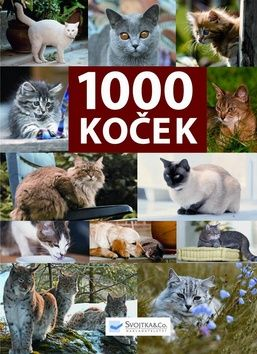 1000 koček cena od 0,00 €