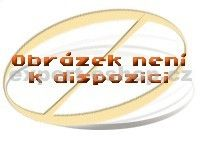 BOSCH HEZ 342012 cena od 0,00 €