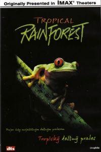 ABCD - VIDEO Tropický deštný prales - DVD cena od 3,19 €