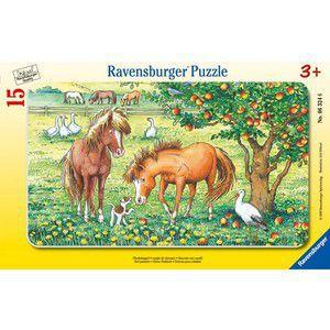 Ravensburger Koníci