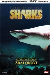 ABCD - VIDEO Pátrání po velkém žralokovi - DVD cena od 3,19 €
