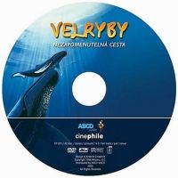 ABCD - VIDEO Velryby - DVD cena od 0,00 €