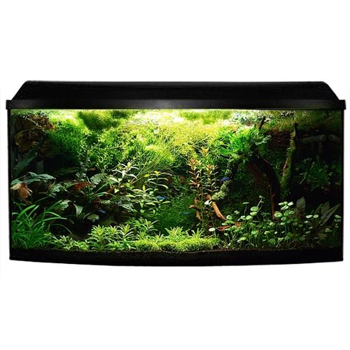 Akvárium Cat-Gato Akvarijní set Atlantic s čelním vypouklým sklem..