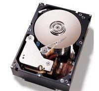 Lenovo IBM 1TB 2.5in SFF HS 7.2K 6Gbps NL SAS HDD 81Y9690
